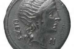N 3.92gr _ 19.4mm