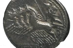 oiseau 3.85gr _ 19.5mm